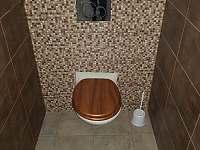 WC přízemí - chata k pronajmutí Olešnice v Orlických horách