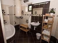 koupelna - pronájem apartmánu Nekoř