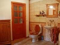 koupelna v podkroví. - chalupa k pronájmu Deštné v Orlických horách