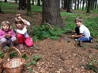 Domeček z mechu a kapradí v místním lese