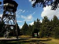 Anenský vrch - rozhledna - Říčky v Orlických horách