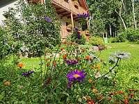 Letní - chata ubytování Horní Orlice