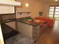 Apartmán Říčky - apartmán k pronájmu - 15