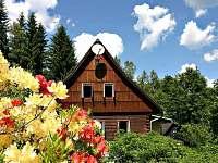 ubytování Sjezdovka Orlické Záhoří - Černá Voda Chalupa k pronájmu - Říčky v Orlických horách