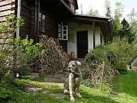 Chalupa Říčky v Orlických horách - k pronajmutí