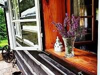 Levandule - chalupa ubytování Nekoř - Údolí