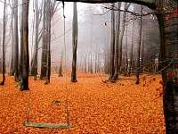 podzim ve Valteřicích - chalupa ubytování Valteřice