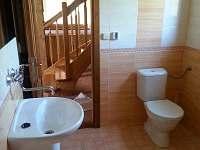 koupelna1a) - pronájem chaty Orličky