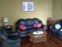 Společenská místnost - vila ubytování Mladkov