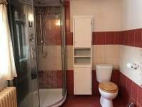 Koupelna - sprchový masážní kout s rádiem - chalupa k pronajmutí Mladkov