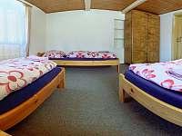 Čtyřlůžkový pokoj menší s výhledem na zahradu I. - Červená Voda - Šanov