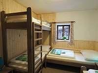 Zdobnice v Orlických horách - apartmán k pronajmutí - 6