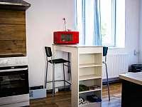 Apartmán na Křižovatce - apartmán k pronajmutí - 30 Dolní Radechová
