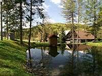 rybník - chata k pronajmutí Deštné v Orlických horách