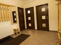 Olešnice v Orlických horách - apartmán k pronajmutí - 10