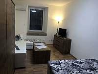 Apartmán č.2 a č.5 - Červená Voda - Mlýnický Dvůr
