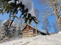 ubytování Bartošovice v Orlických horách - Nová Ves Chalupa k pronajmutí