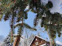 Chalupa Zvonkové údolí - chalupa - 47 Bartošovice v Orlických horách - Nová Ves