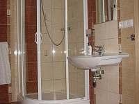 Apartmán je vybaven samostatnou koupelnou a WC - Jamné nad Orlicí