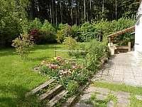Zadní zahrada - apartmán ubytování Radíkov
