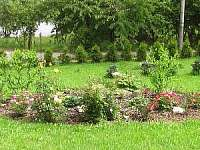 zahrada - vila k pronajmutí Plumlov u Prostejova