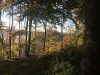 Lesy v okolí - Spálov
