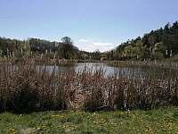 Rybníky ve Zbyslavicích - pronájem chalupy Olbramice