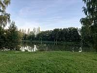Chata Liduška - pohled na Selský rybník od chaty - k pronajmutí Zlaté Hory