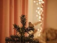 Vánoce u nás ❤️ - Štěpánov - Moravská Huzová
