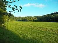 Louka před naší chatou, pohled od lavičky - Penčice