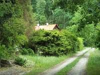 Příjezdová cesta u naší chaty - k pronajmutí Penčice