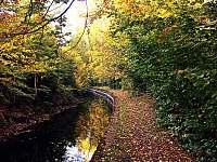 Papírenský náhon který se nachází přímo nad chatou je jako stvořený na procházku - Hradec nad Moravicí - Žimrovice