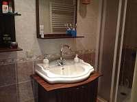 Koupelna se sprchovým koutem - chata k pronájmu Dolní Domaslavice