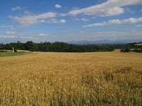 okolní pole, cesta do údolí Jamníka 2