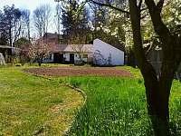 A takto vypadá zahrada na jaře - chalupa k pronajmutí Mladeč