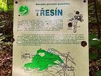 """krásný les """"Třesín"""" začíná za domem - Mladeč"""