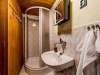 Kúpeľňa so sprchovým kútom a WC - chata k pronájmu Lučivná - Lopušná Dolina