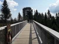 chodník v korunách stromov Bachledka (20,7 km od nás) - Stará Lesná