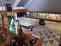 Múzeum Tatranského národného parku (5,8 km od nás) - Stará Lesná