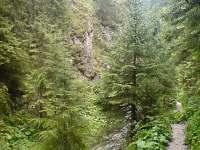 Juráňova dolina Oravice - chata k pronájmu