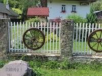 Borovka Osadné