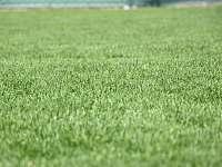 trávnik,možnosť behať naboso - Ivachnová