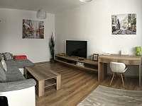 Style Apartment - apartmán k pronajmutí - 20 Telgárt