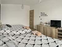 Style Apartment - apartmán k pronájmu - 3 Telgárt