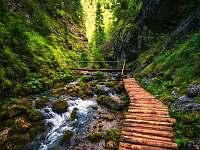Prosiecka dolina (17km) - Lúčky pri Ružomberku