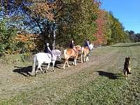 krásná příroda - ještě krásnější z koňského hřbetu