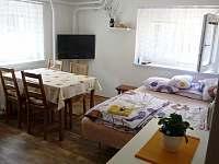 kuchyň gauč + TV - apartmán k pronájmu Nižbor
