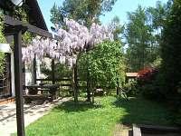 Županovice Slapská přehrada - chata k pronajmutí - 25