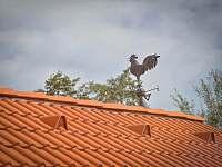 poznávací znamení: kohout na střeše - chalupa k pronájmu Láz