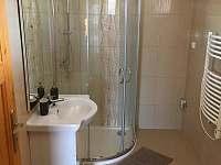 Koupelna - pronájem chaty Divišov u Benešova